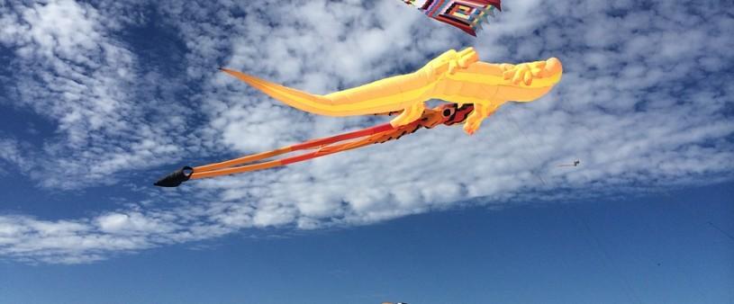 kites-737321_960_720 (1)
